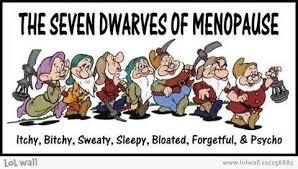 dwarfs of menopause